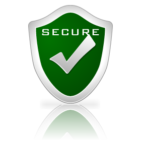 Secure Website Payments